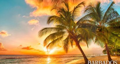 Splendido tramonto sul mare con una vista al palms sulla spiaggia bianca su un isola caraibica di Barbados