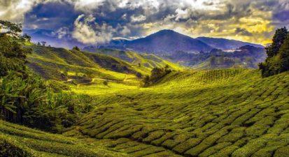 malaysia-1864676_1920_opt